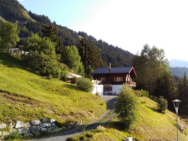 Large traditional chalet for sale near the resort center